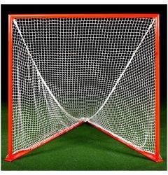Brine Professional Game Goal