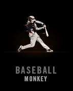 BaseballMonkey
